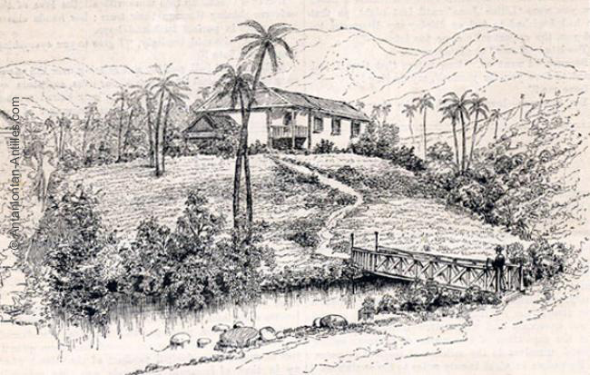 napoleon's influence on haitian revolution The influence of revolution - latin america a the haitian revolution: the only successful slave revolt in history  napoleon's invasion of spain in 1807 weakened.